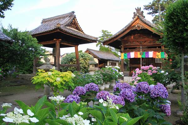 大塚山 性海寺(しょうかいじ)