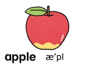 こども英語 apple
