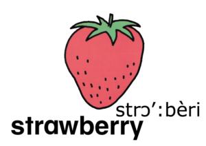 こども英語 strawberry