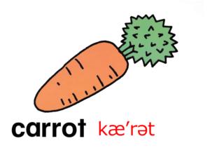 こども英語 carrot