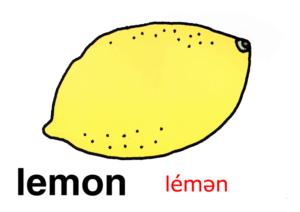 こども英語 lemon