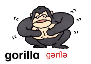 こども英語 gorilla