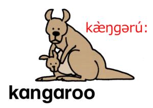 こども英語 kangaroo