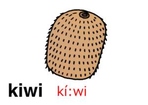 こども英語 kiwi