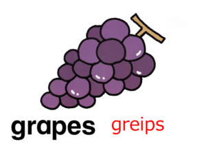 こども英語 grapes