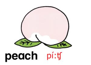 こども英語 peach